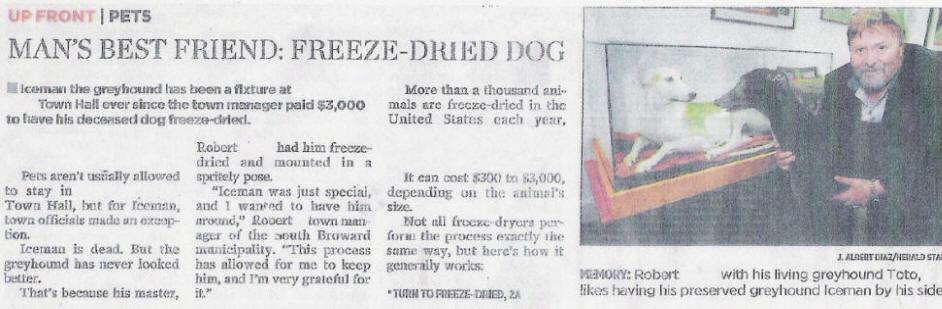 iceman_news1